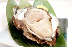 201406岩牡蠣
